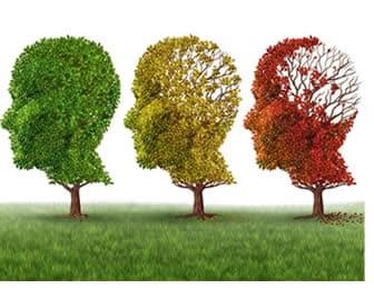diversi tipi di alzheimer