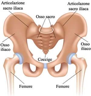 dolore doloroso al bacino