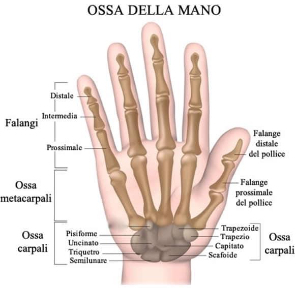 Dolore della mano e del polso